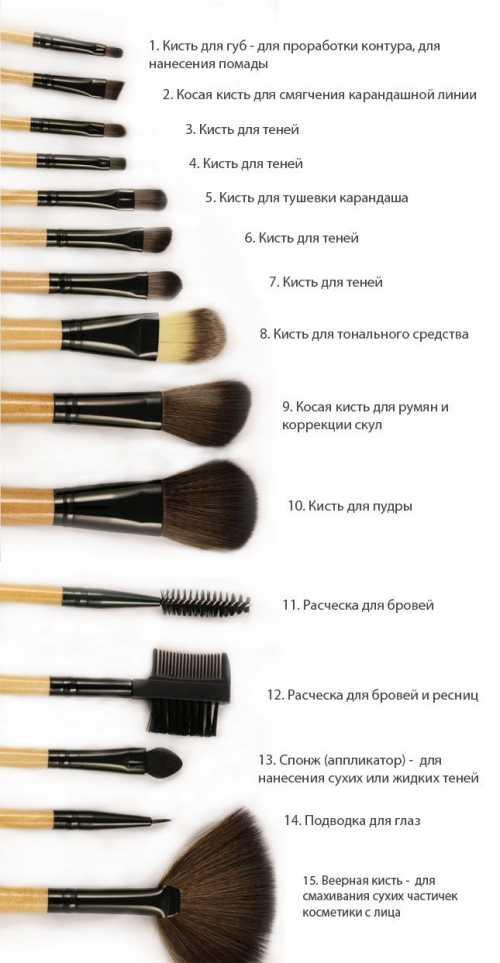 Кисти для макияжа: какие выбрать и как использовать